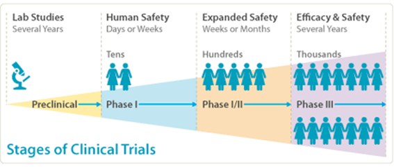 Stages of clinical trials.
