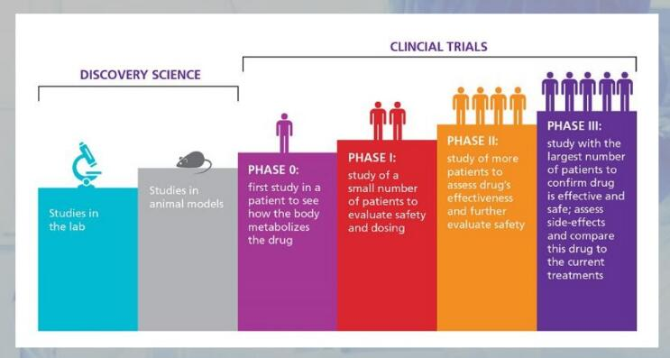 Clinical trail phases. (Pharmaceutical biotechnology clinical trials, M. Vharshini)